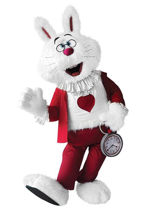 mascot mascote de vestir coelho - Portfólio de Mascotes de Pelúcia Personalizados